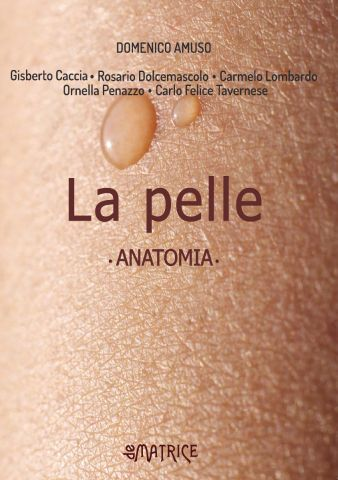 La pelle. Anatomia